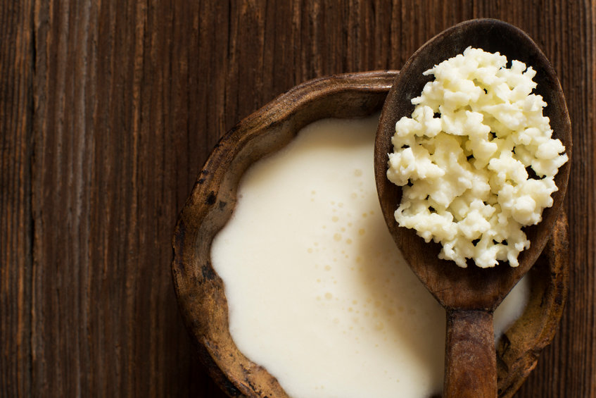 Kefir a Probiotic Drink and Boosts the Immune System