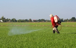 Pesticides can be harmful to gut flora so it is a good idea to avoid them.
